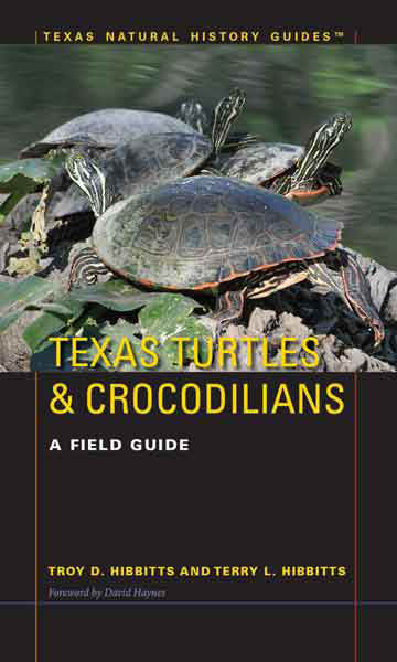 texas turtles